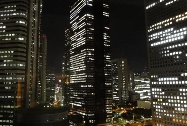 view from the Hilton Tokyo hotel Shinjuku