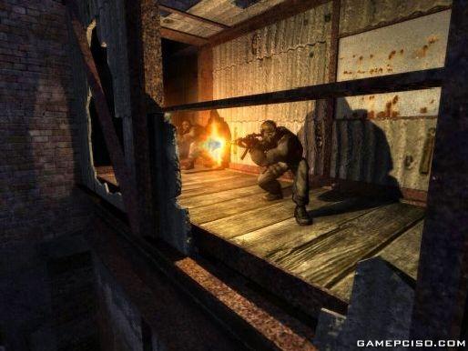 stalker shadow of chernobyl download igg