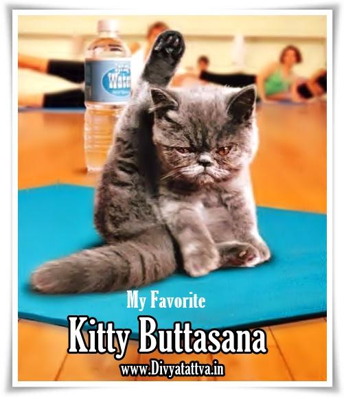 Divyatattva Yoga Laff Yoga Humor Meditation Funny Jokes By Rohit Anand