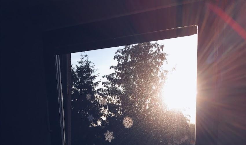 Vánoce 🎄
