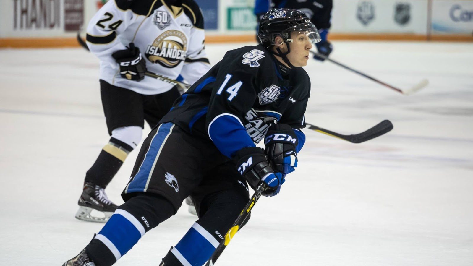Station Nation Drover To Join Mhl S Wildcats