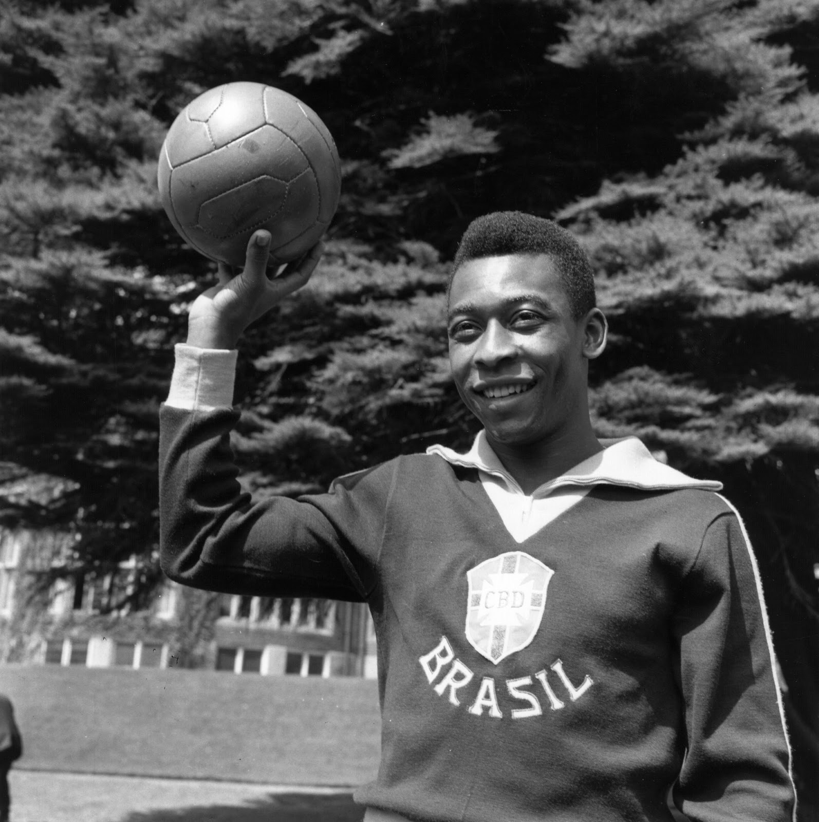 Soccer Players: FRITZ THE FLOOD: Gods Of Brazil: Pele & Garrincha
