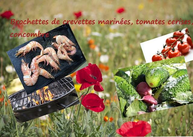 Crevettes marinées, tomates, concombre grillées au bbq