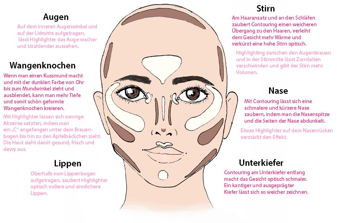 Charmant Lateralen Augenwinkel Anatomie Bilder - Anatomie Von ...