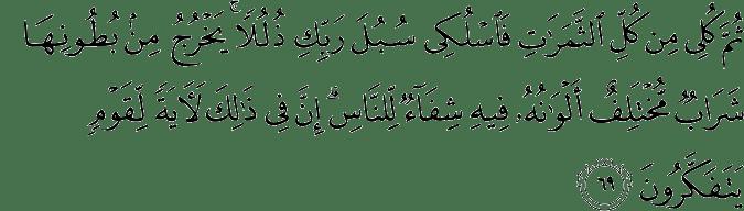 Surat An Nahl Ayat 69