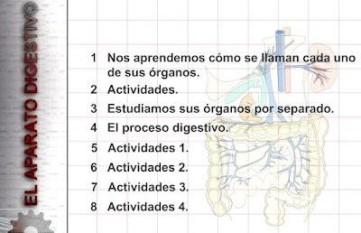 http://www.eltanquematematico.es/pizarradigital/AparatoDigestivo/inicio_cm.html