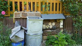 Alemania y el auge de la apicultura urbana 9