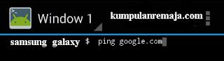 ping google pakai emulator android
