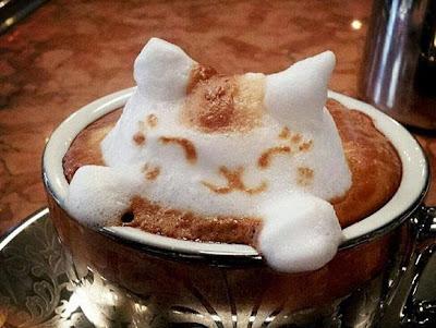 cafe_anti_oxidant