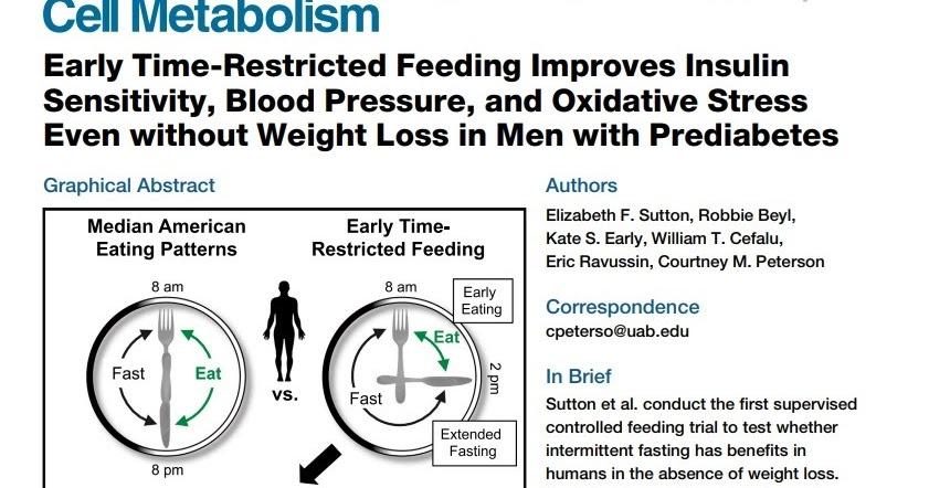 dieta para diabetes tipo 1 no resistente a la insulina