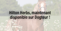 Hilton Herbs, maintenant disponible sur Dogteur !