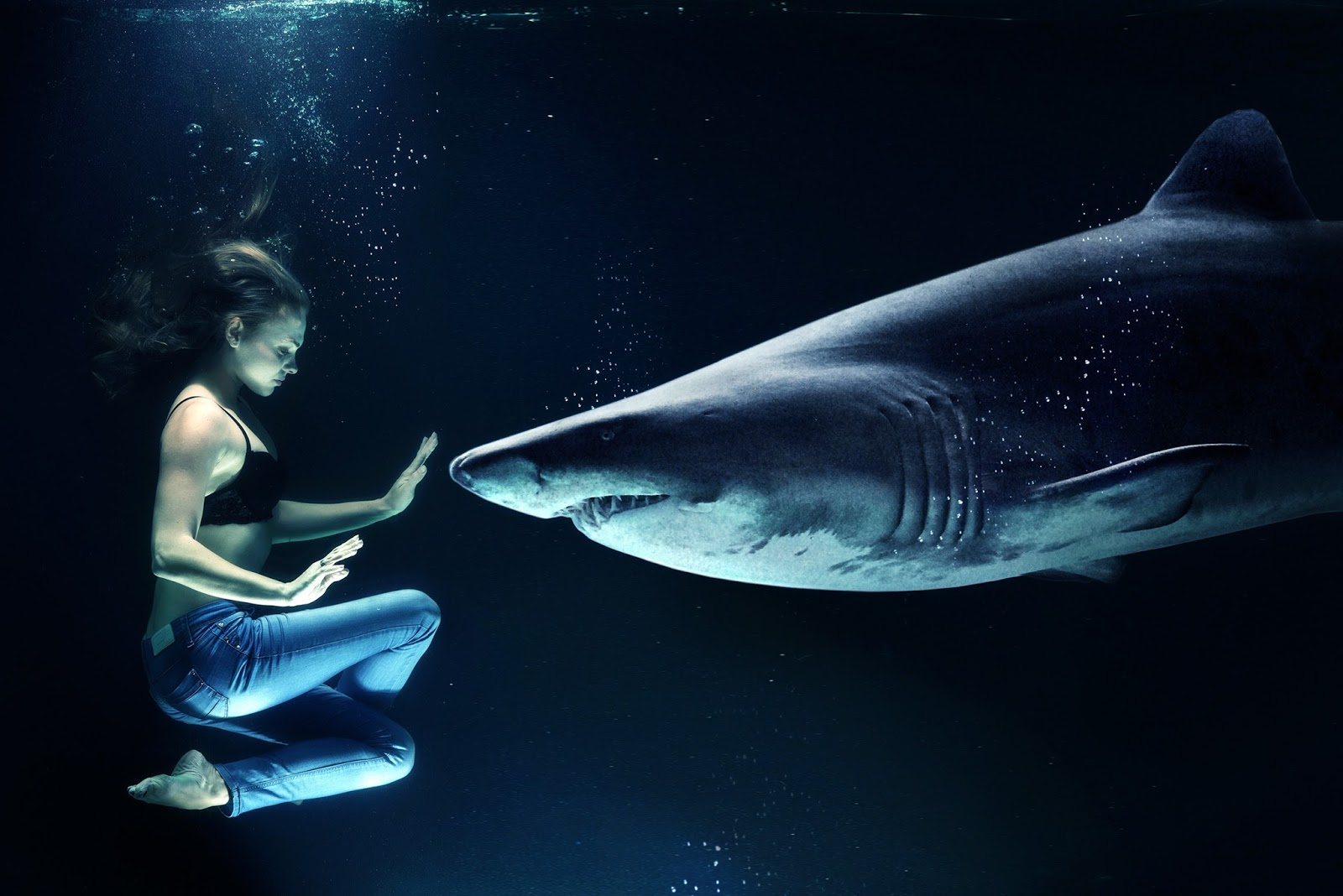A woman under water together with a shark.