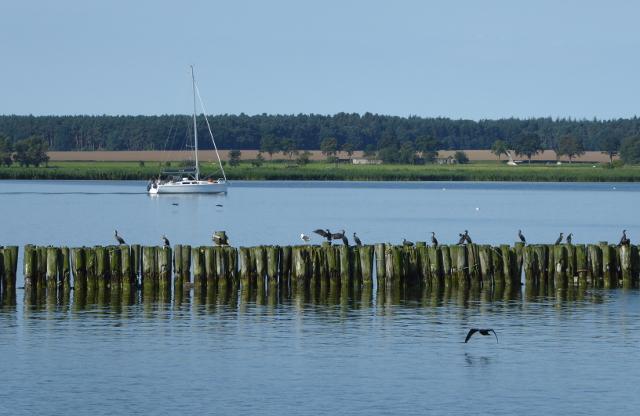 Vista de la costa bàltica