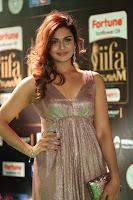 Telugu Actress Aarthi in Deep Neck Backless Golden Gown at IIFA Utsavam Awards 2017 Exclusive 41.JPG