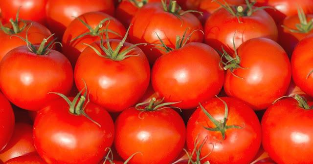 manfaat tomat untuk kesehatan dan kecantikan