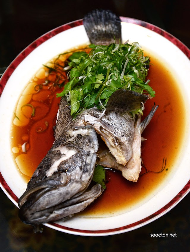 Fresh Steamed Red Snapper with Golden Garlic and Superior Soya Sauce