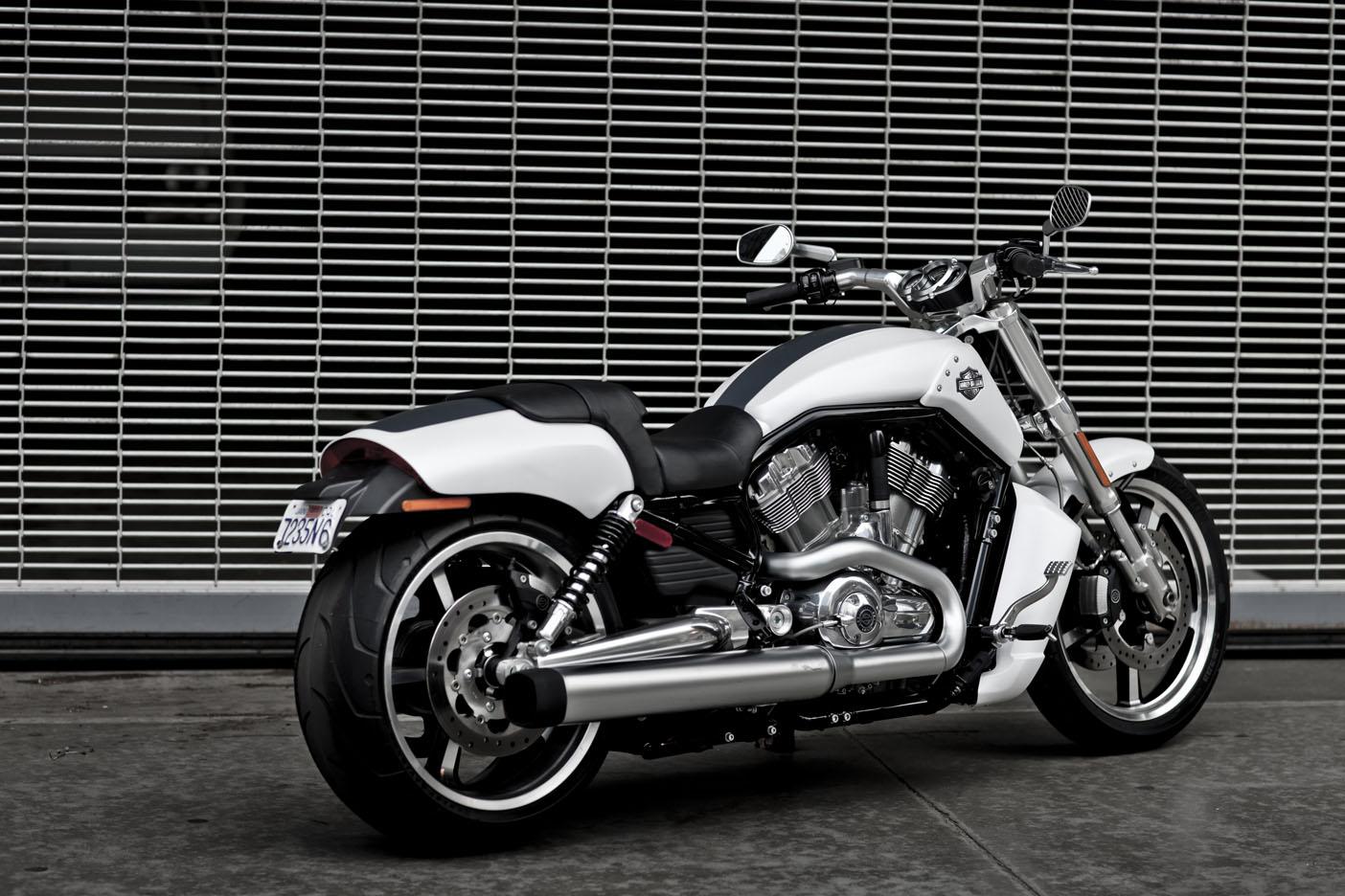 harley davidson muscle and sport bikes on pinterest. Black Bedroom Furniture Sets. Home Design Ideas
