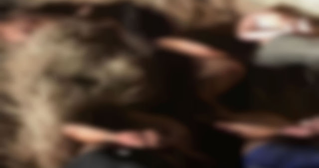 Ejecutan a 11 personas en Apaseo el Grande, GTO...ni el ejercito ha parado las masacres en donde la vida no vale nada
