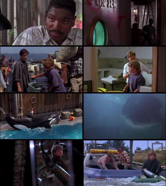 Free Willy 1993 Dual Audio Hindi 720p BRRip
