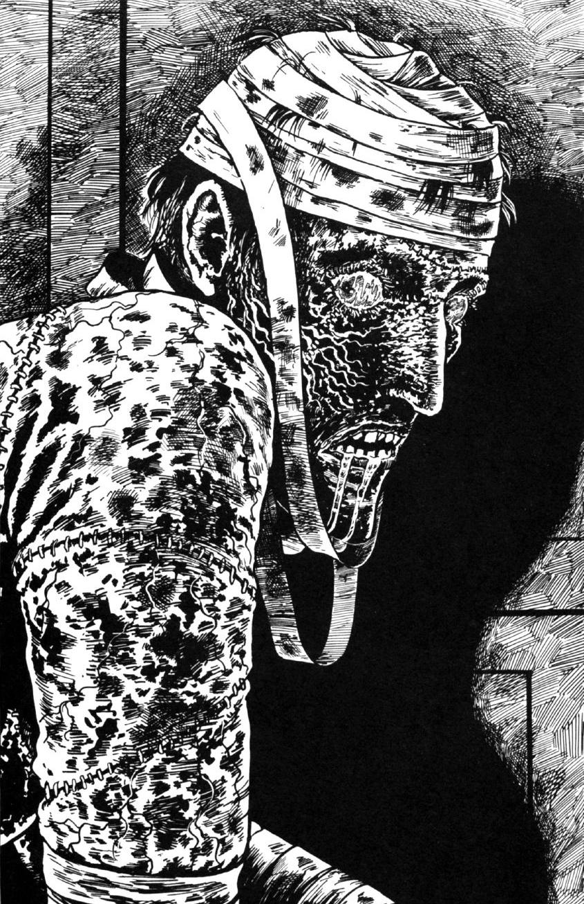 comics: Frankenstein (Junji Ito 1994-1998)