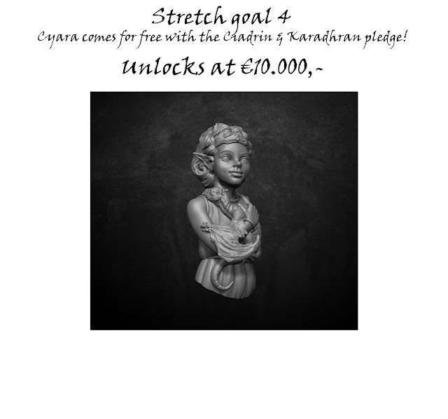Stretch%2Bgoal4a.jpg