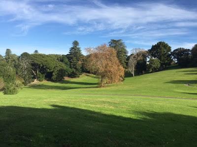 Carole's chatter: Monte Cecilia Park