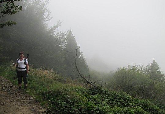 Przed przełęczą Bukowina.