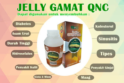 Agen QnC Jelly Gamat Kalimantan Barat