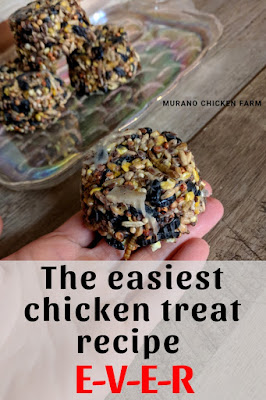 Chicken treats from easy to follow recipe