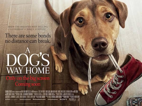 Sinopsis Film A Dog's Way Home (2019)