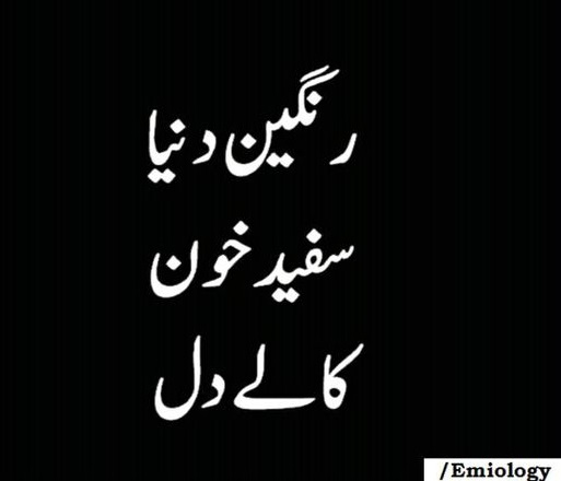Poetry quotes about life and love in urdu