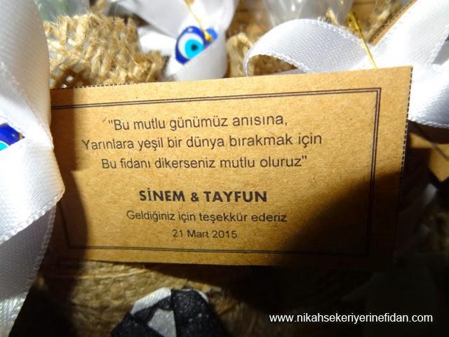 İstanbul nikah çamı fidanı Sinem Tayfun 2