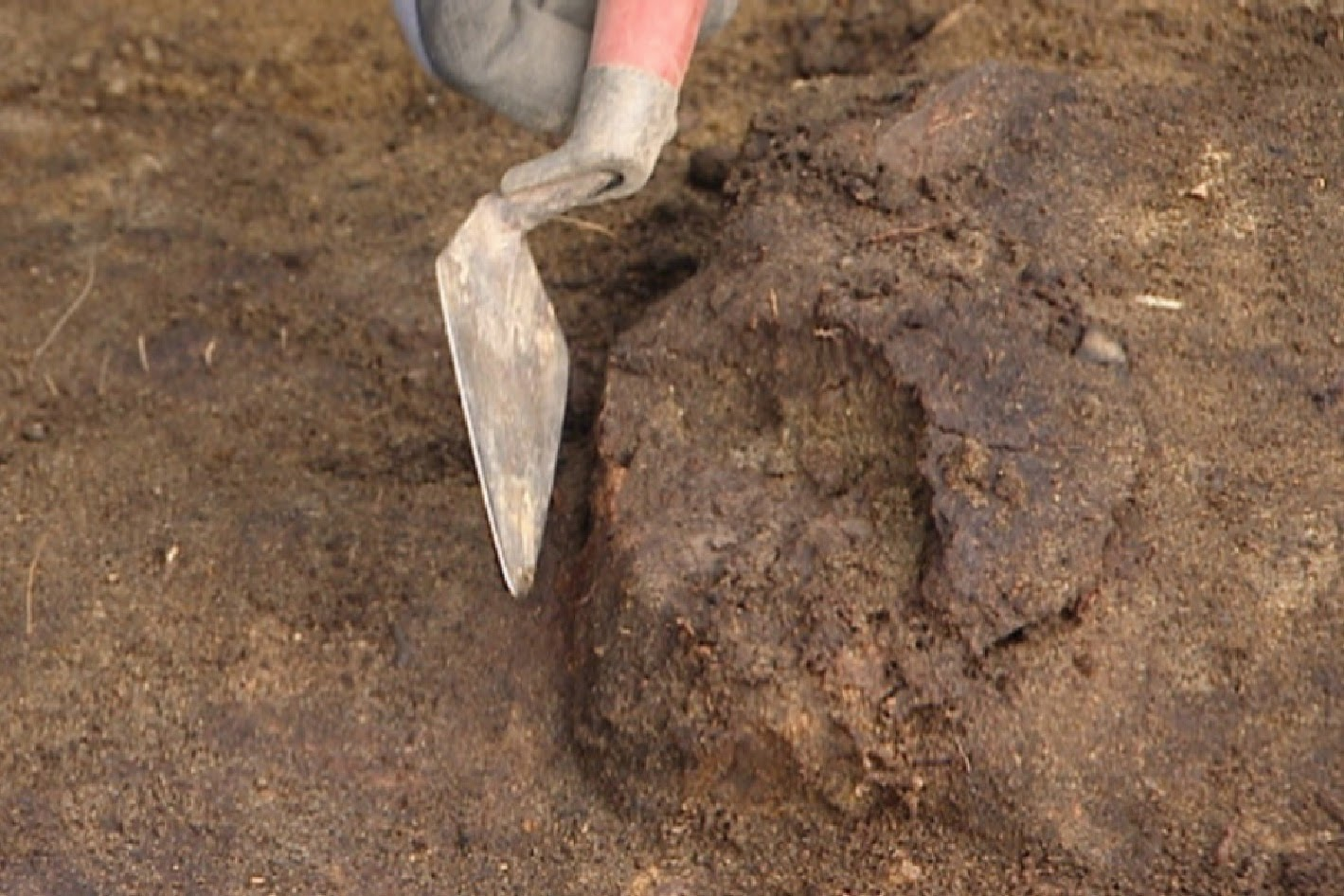 Norway archaeologists find 8,000-year-old skull