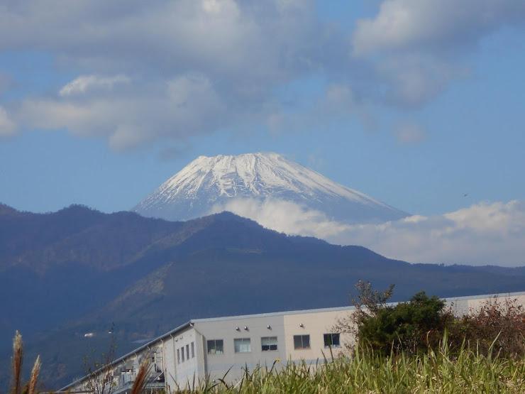 雪を頂く富士山