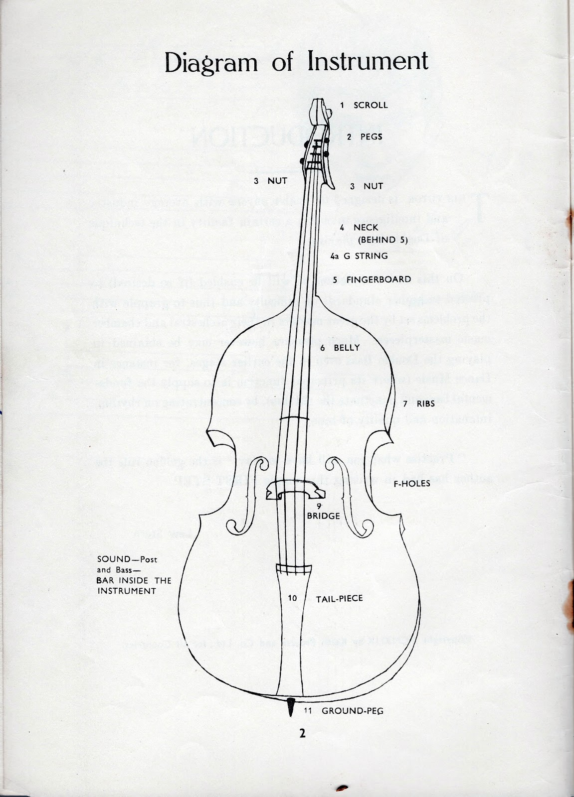Bass Neck Diagram 2006 Kawasaki Klr 650 Wiring Guitar Parts Fretboard Elsavadorla