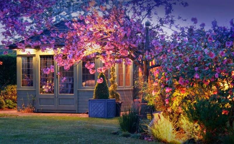 outdoor garden lighting. Outdoor LED Garden Lights: Lighting Under The Tree A