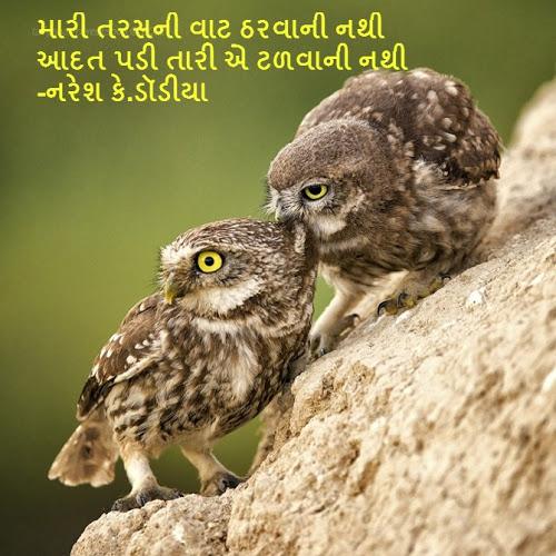 Mari Taras NI Vaat Tharvani Nathi Sher By Naresh K. Dodia
