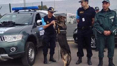 Bulgar sınırları yeni AB sınır koruma ajansı tarafından korunacak