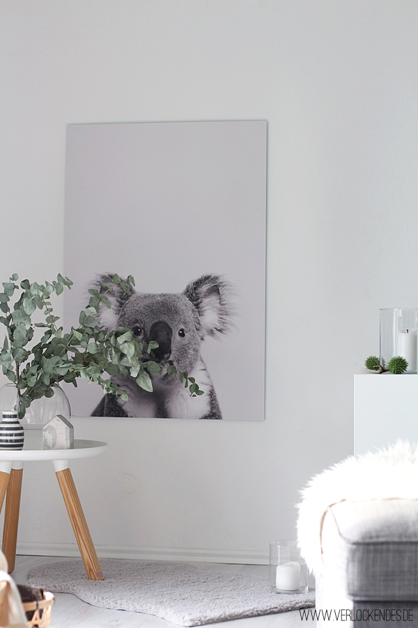 Posterlounge Koala Poster