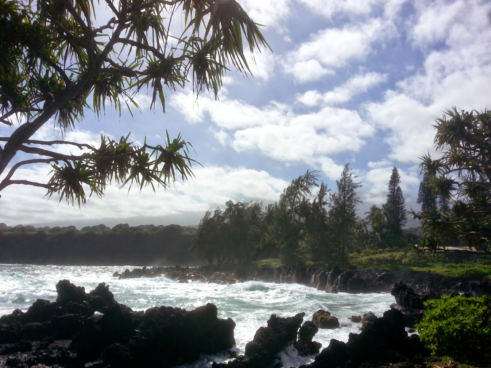 Iles de Hawaii  - Maui