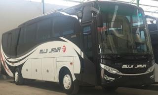 rute dan tarif Bus Muji Jaya jurusan Jepara, Semarang, Kudus