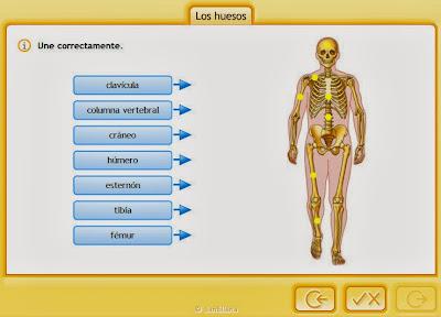 http://www.e-vocacion.es/files/html/143315/recursos/la/U03/pages/recursos/143315_P35_3/es_carcasa.html
