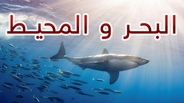 الفرق بين البحر والمحيط :البحر