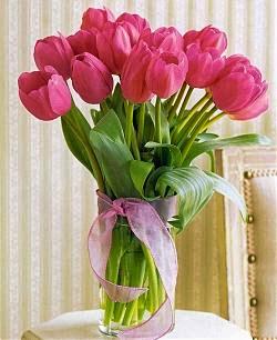 Bunga Tulip Dalam Vas Kaca