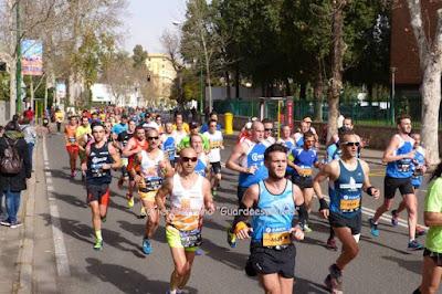 maraton sevilla fotos videos resultados 2016