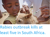http://sciencythoughts.blogspot.co.uk/2018/03/rabies-outbreak-kills-at-least-five-in.html