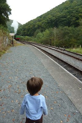 Gwili Steam Railway, Carmarthen