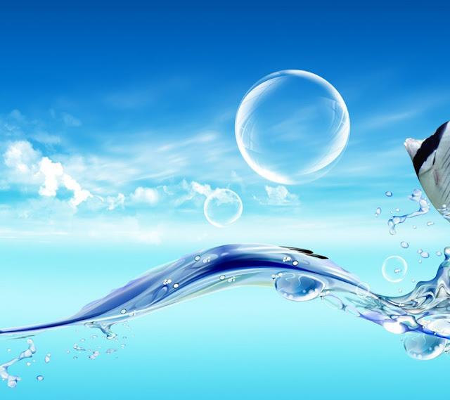HD-Fish-Jumping-water-Wallpaper