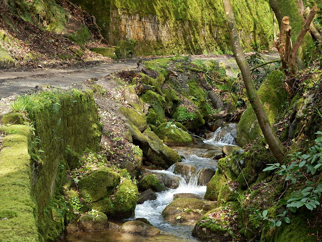 River in Gover Valley, St.Austell, Cornwall