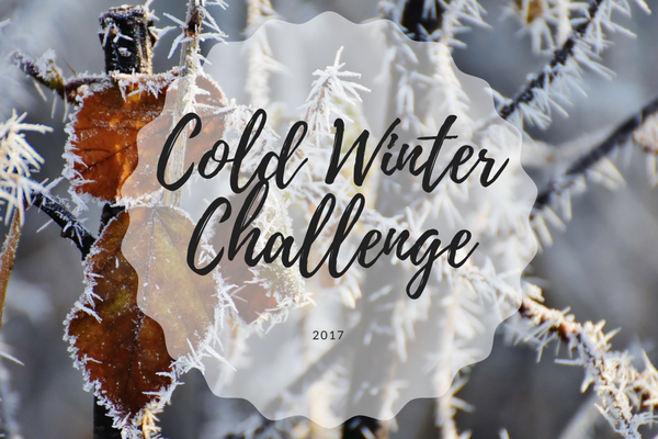 https://resandeuttern.blogspot.com/2017/11/cold-winter-challenge.html
